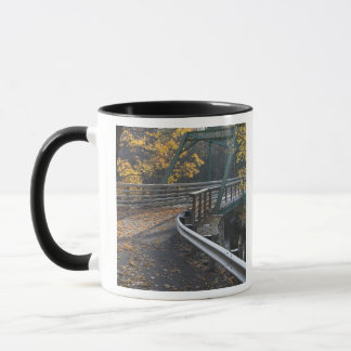 Fall foliage and a bridge over the Millers Mug
