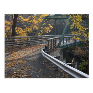 Fall foliage and a bridge over the Millers Postcard