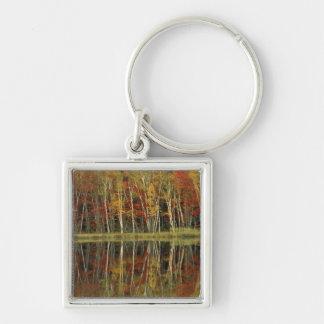 Fall Foliage and Birch Reflections; Hiawatha Keychain