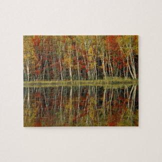 Fall Foliage and Birch Reflections Hiawatha Jigsaw Puzzle