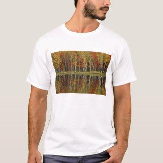Fall Foliage and Birch Reflections; Hiawatha T-Shirt