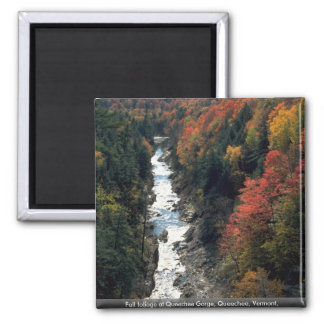 Fall foliage at Queechee Gorge, Queechee, Vermont, Refrigerator Magnet