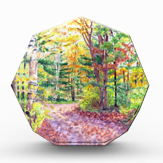 Fall Foliage Award