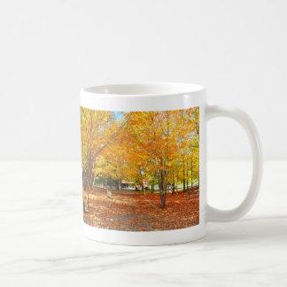 Fall Foliage Canyon Sainte Anne Quebec Canada Mug
