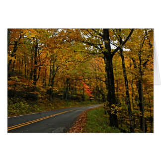 Fall Foliage Country Road Note Card