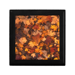 fall-foliage jewelry box