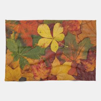 Fall Foliage Kitchen Towel