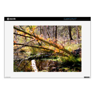 Fall Foliage Laptop Skin For Mac and PC