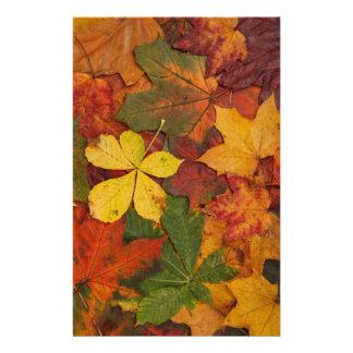 Fall Foliage Leaves in Neutral Colors Stationery