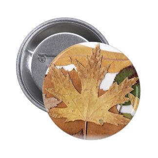 Fall Foliage Maple Leaf Buttons