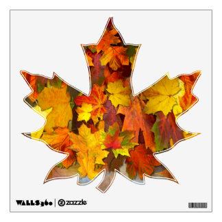 Fall Foliage ~ Maple Leaf Decal