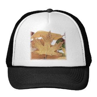 Fall Foliage Maple Leaf Mesh Hats