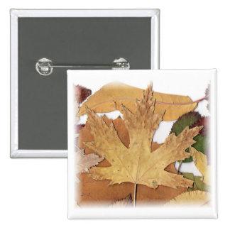 Fall Foliage Maple Leaf Pinback Buttons
