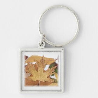 Fall Foliage Maple Leaf Silver-Colored Square Keychain