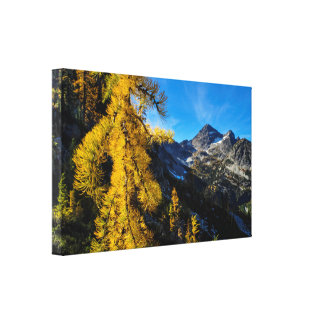 Fall Foliage - Maple Pass Loop Canvas Print