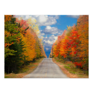 Fall Foliage New England Poster