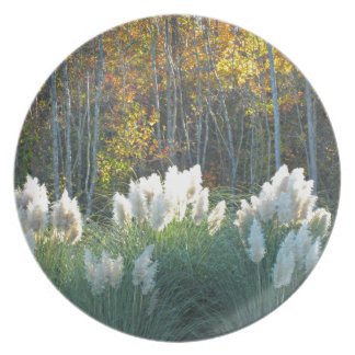 Fall Foliage Party Plate