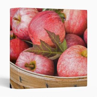 Fall Food Binder