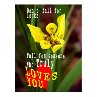 Fall for someone who truly loves you. postcard