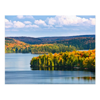Fall forest and lake postcard