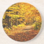 Fall forest drink coaster