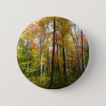Fall Forest I Autumn Landscape Photography Button