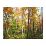 Fall Forest I Autumn Landscape Photography Canvas Print