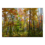 Fall Forest I Autumn Landscape Photography Card