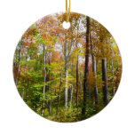 Fall Forest I Autumn Landscape Photography Ceramic Ornament