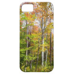 Fall Forest I Autumn Landscape Photography iPhone SE/5/5s Case
