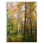 Fall Forest I Autumn Landscape Photography Notebook