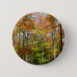 Fall Forest II Autumn Landscape Photography Button