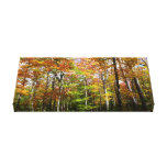 Fall Forest II Autumn Landscape Photography Canvas Print