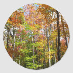 Fall Forest II Autumn Landscape Photography Classic Round Sticker