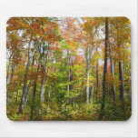 Fall Forest II Autumn Landscape Photography Mouse Pad