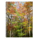 Fall Forest II Autumn Landscape Photography Spiral Notebook