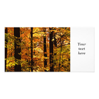 Fall forest photo card