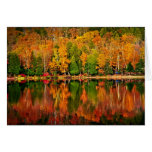 Fall forest reflections card