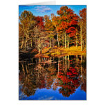 Fall forest reflections stationery note card