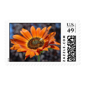 Fall 'Funflower' Postage