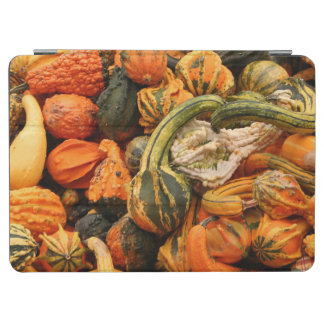 Fall Gourd Background iPad Air Cover
