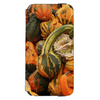 Fall Gourd Background iPhone 6/6s Wallet Case