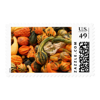 Fall Gourd Background Postage Stamp