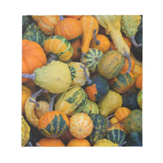 Fall Gourds I Notepad
