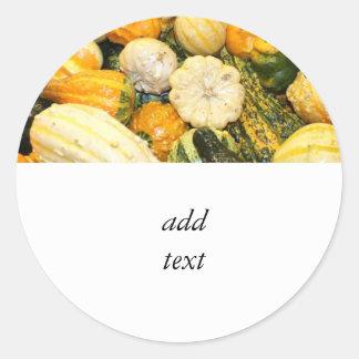 Fall Gourds & Mini Pumpkins Classic Round Sticker