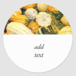 Fall Gourds & Mini Pumpkins Round Stickers