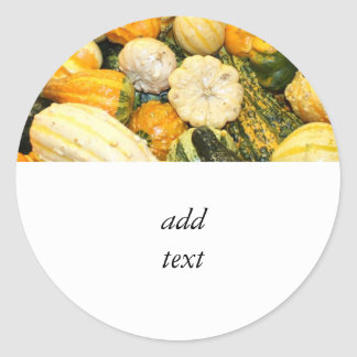 Fall Gourds Mini Pumpkins Round Stickers