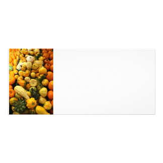 Fall Gourds Personalized Rack Card