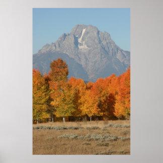 Fall, Grand Teton Mountain Print