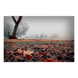 Fall ground shot, on a poster
